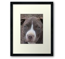 Is This Close Enough? Framed Print