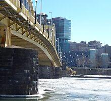 Under the Frozen Bridge by gsnorto