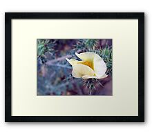 ©NS Protected By Thorns IA Framed Print