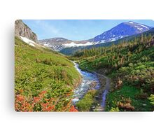 Clean and Cold Canvas Print