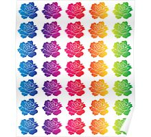 Rainbow Roses Poster