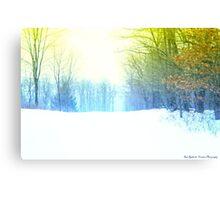 Winter Translucent Canvas Print