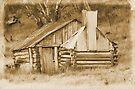 Guys hut Howitt plains. by Donovan Wilson