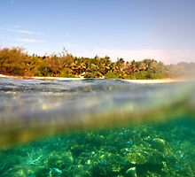 Above and below tropical island view by photoeverywhere