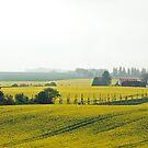 Kap Arkona - Insel Ruegen - Germany by Arie Koene