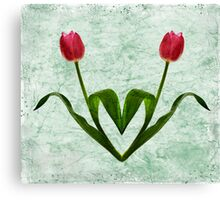 Tulip Heart Canvas Print