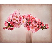Pink Blossom Photographic Print
