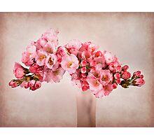 Pink Blossom Photographic Print