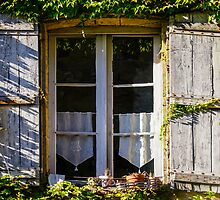 Ivy Circled Window by GeorgiaFowler