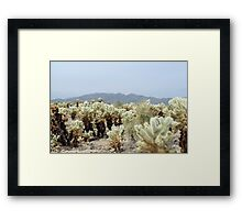 Cactus Garden landscape Framed Print