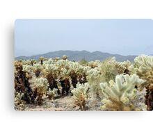Cactus Garden landscape Canvas Print