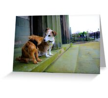 Goochey and Lobito in the oratory Gardens , Liverpool Anglican Cathedral  Greeting Card