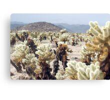 Cactus Garden Details Canvas Print