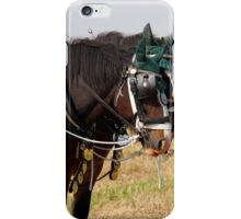 Shire horses iPhone Case/Skin