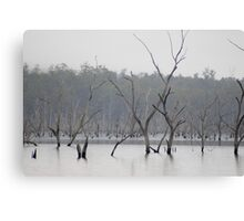 lifeless landscape Canvas Print