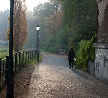 Woman walking on a misty footpath by photoeverywhere