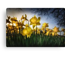 Happy & Glorious Canvas Print