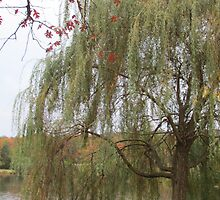 Under The Willow by OhMehDamn