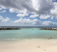 Beach on De Palm Island - Aruba by stine1