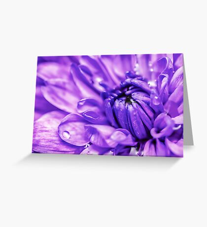 Purple Abstract Flower Greeting Card