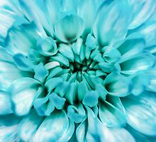Blue Abstract Flower by MMPhotographyUK
