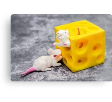 Mice and Cheese Canvas Print