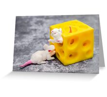 Mice and Cheese Greeting Card