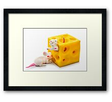 Mice on Cheese Framed Print
