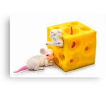 Mice on Cheese Canvas Print
