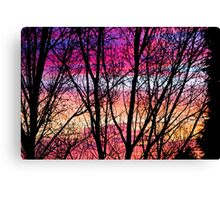 Coloured Skies Canvas Print