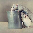 Jimmy and Snoozy by Ellen van Deelen