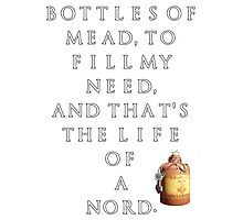Nord's Life Mead Poster Photographic Print