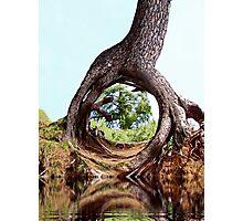 Wonder Of Nature Photographic Print