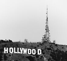 the native hollywood by wabnitz