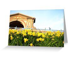 Alexandra Palace Daffodils 3 Greeting Card