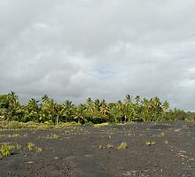Kalapana Lava Field by photoeverywhere