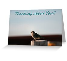 Thinking About You Card Greeting Card