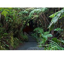 lava tube entrance Photographic Print