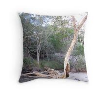 'I CAN STAND ALL  BY MYSELF THANK YOU'! Bribie Island, Qld. Throw Pillow
