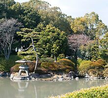 Formal Japnese Garden by photoeverywhere