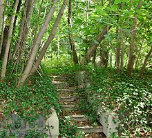 Nature Reclaims by Gilda Axelrod