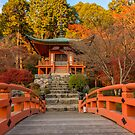 Japan - Kyoto by lapart
