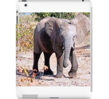 Elephant, Kruger, South Africa iPad Case/Skin