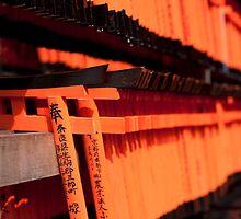 miniature torii gates by photoeverywhere