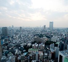 tokyo cityscape by photoeverywhere