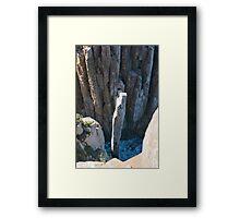 cape hauy totem pole Framed Print