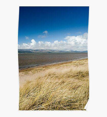 Dune grass at Askam in Furness Poster