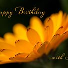 Calendula aglow - birthday by Celeste Mookherjee