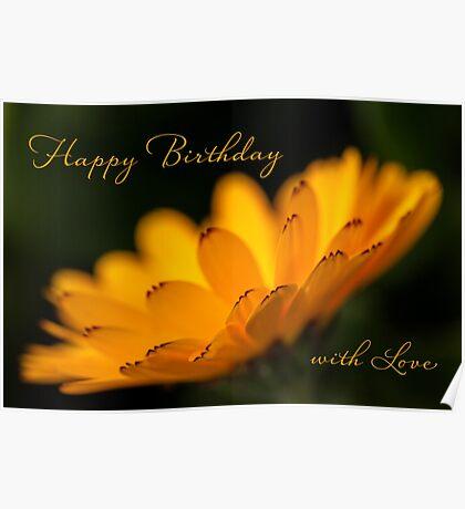 Calendula aglow - birthday Poster