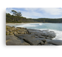 fortescue bay beach Canvas Print
